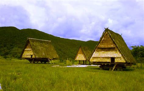 rumah adat provinsi sulawesi tengah tambi pewarta
