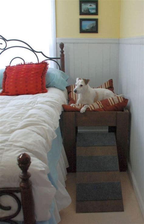 elevated cat bed best 25 elevated dog bed ideas on pinterest pvc dog bed