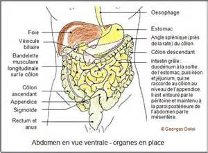 biotop terminologie m 233 dicale lexique m 233 dical