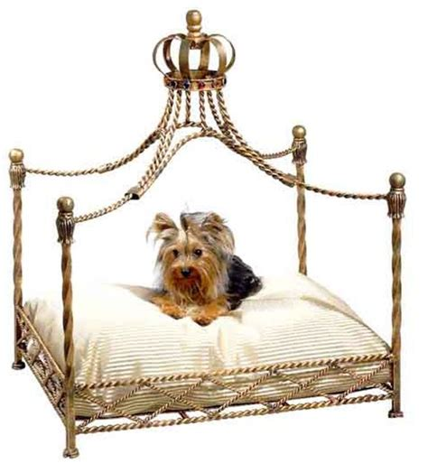 cute dog bed cute dog beds for large dogs pictures reference