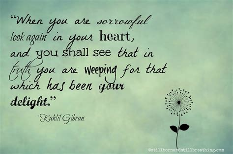 comfort the grieving quran quotes on grief quotesgram