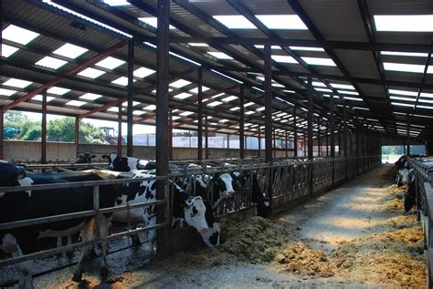 Cattle Sheds For Sale by Properties For Sale Atm Property Sales