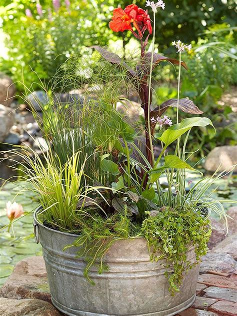 garden water containers 17 best images about water garden creations on
