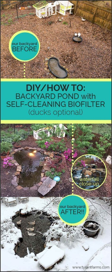 How To Clean A Backyard Pond by 25 Best Ideas About Backyard Ponds On Pond