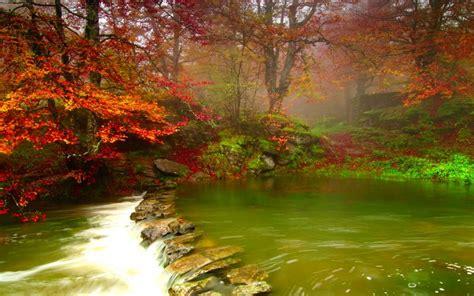 hd beautiful misty forest river wallpaper