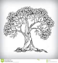 hand drawn tree symbol download from over 28 million