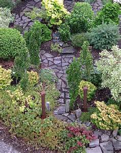 dwarf conifer garden design beautiful modern home