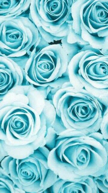 pin  maleah rose  backgrounds  iphone pinterest