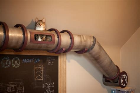 unique cat tunnel in steunk style right at a home