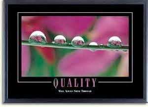 Quality quality will always shine through