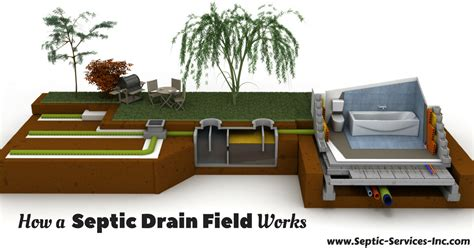 buying a house with a septic system how a septic drain field works septic services inc