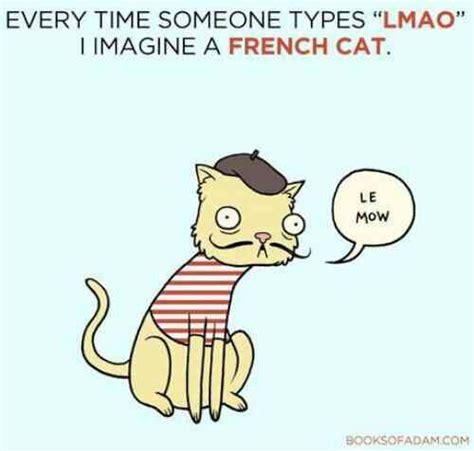 Meme French - lmao french cat meme ayy lmao meme