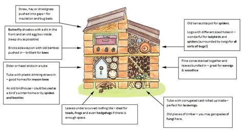what do you need to build a house how to build a bug hotel forestipedia forestipedia