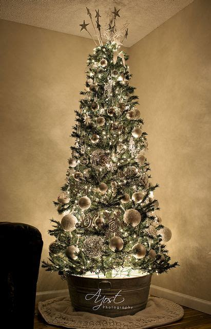 pictures of christmas trees in a wash tub rustic tree and it has a light in the galvanized steel tub to light from beneath