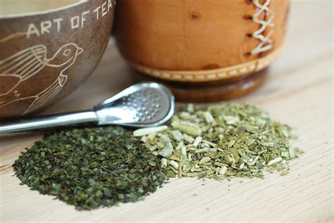 what is matte tea yerba mate tea what you need to artoftea