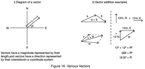 Two Dimensional Motion And Vectors Worksheet Answers by 100 Vectors And Projectiles Worksheet Two