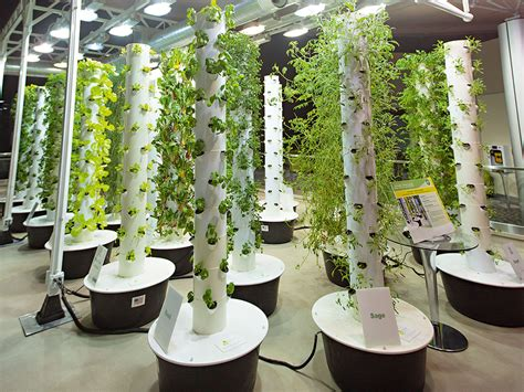 Vertical farming is going to feed us all the new economy
