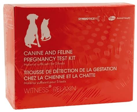 pregnancy test for dogs canine and feline pregnancy test kit 5 tests