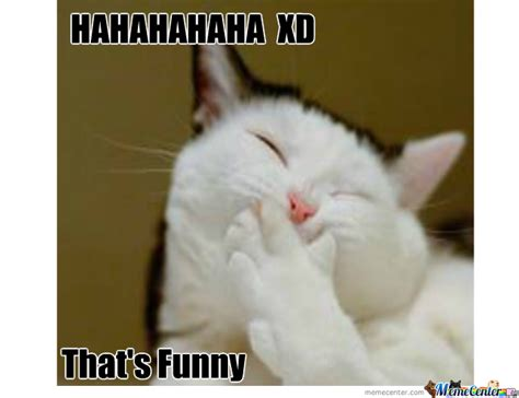 Laughing Cat Meme - laughing cat by xfantanosa meme center