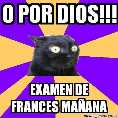 Anxiety Cat Meme Generator - meme anxiety cat o por dios examen de frances ma 241 ana
