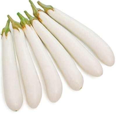 Jual Benih Bibit Terong jual benih terong putih 100 biji non retail bibit