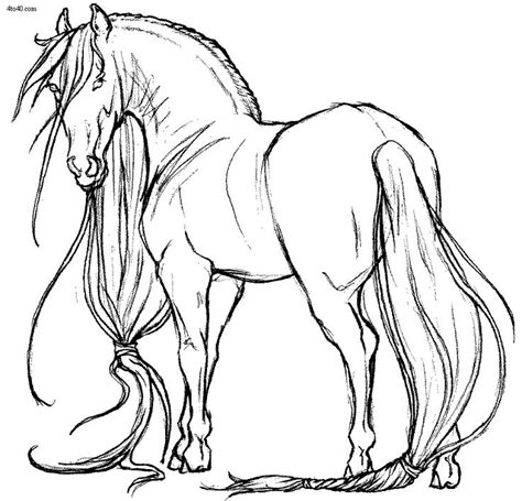 coloring pictures of horses heads 17 best ideas about coloring pages on