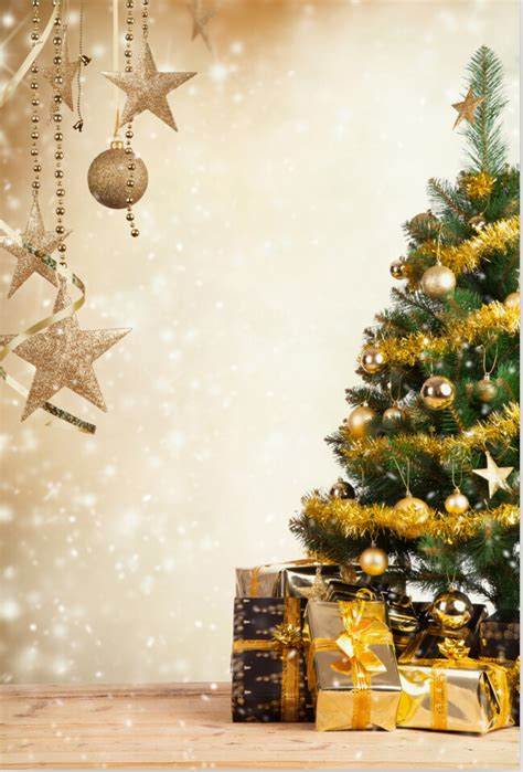 200cm 300cm christmas day photo studio background vinyl
