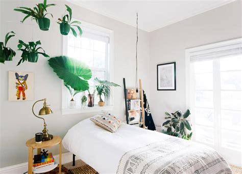 ideas para decorar dormitorios con fotos dormitorios con plantas fotos ideas y consejos
