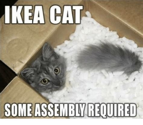 Ikea Meme - ikea cat required ikea meme on me me