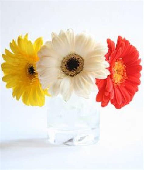 Fleur Series by S 233 Rie Fleurs 1 T 233 L 233 Charger Des Photos Gratuitement