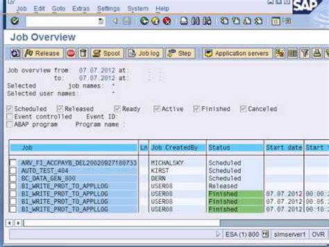 tutorial sap basis pdf sap basis training videos introduction to sap system