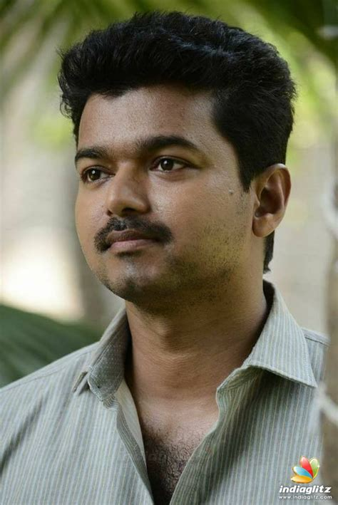 actor photo vijay photos tamil actor photos images gallery stills