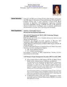 Professional Summary Resume Exles professional summary exles best business template