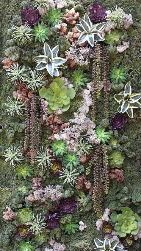Carries Best Friend Has A Succulent Business And Offered Succulent Garden Wall