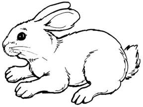 coloring pages for free free printable rabbit coloring pages for animal place