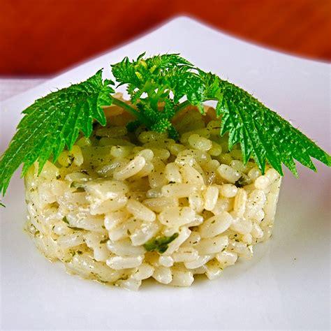 cucinare ortica ricetta risotto alle ortiche diario di cucina expat