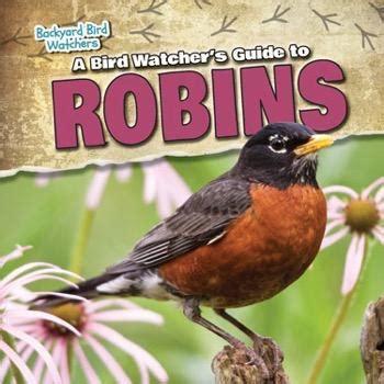 backyard bird watcher backyard bird watcher 28 images the little bird