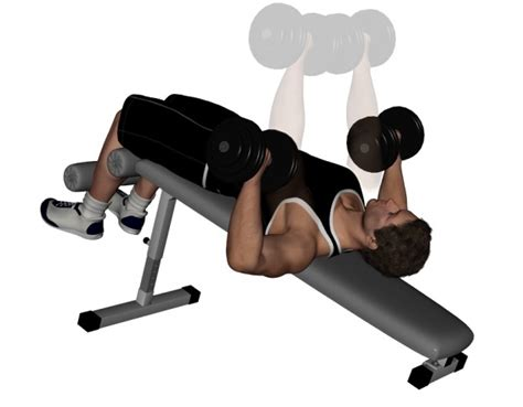 dumbbell bench press exercise decline dumbbell bench press pictures video guide and tips