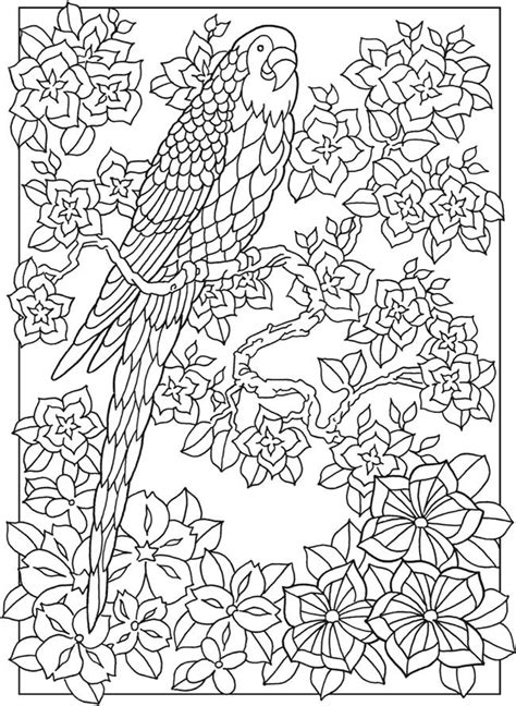 welcome to dover publications 17 best images about coloring pages drawings on
