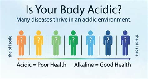 proper ph balance is critical for good health do this to make your body alkaline as quickly as possible