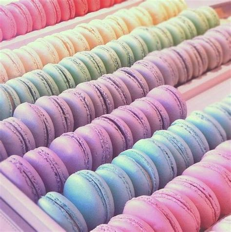 pastel macarons pattern 25 best ideas about macaroons on pinterest french