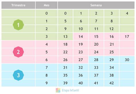 calcular semanas de embarazo calculadora del embarazo tabla para contar las semanas y los meses en el embarazo