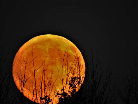 harvest moon october s harvest moon a rare sight cleveland 19 news