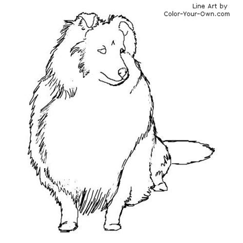 Sheep Dog Coloring Page | free sheepdog coloring pages
