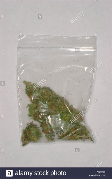 bag of grass marijuana herbal cannabis still studio