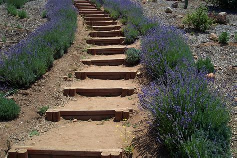 step by step diy garden steps and stairs the garden glove how to calculate vertical hillside rise to build stairs