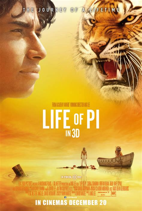 themes in life of pi film mr brown s movie breakdown when survival becomes a journey