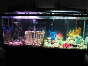 Used Kitchen Furniture For Sale home aquariums bukit