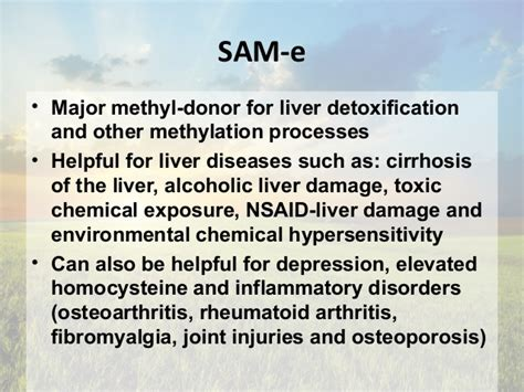 Sam E Liver Detox by Aug Liver Detoxification