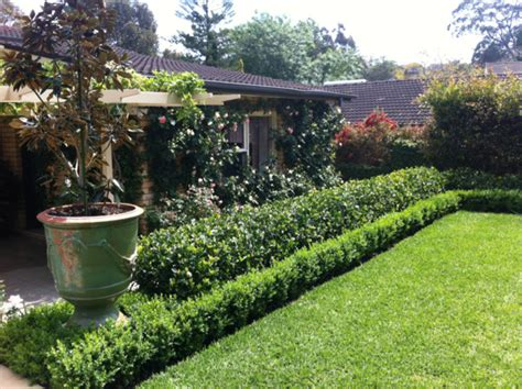 semi formal garden traditional landscape sydney by garden estate landscaping